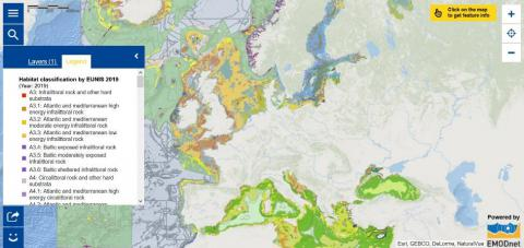 Seabed Habitats