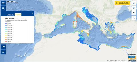 Map of the Week – Maerl Habitats